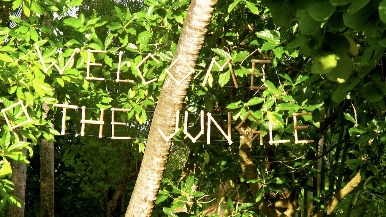 Wedding In Maldives Jungle Theme 2link Events 7 De Plan V De Plan V